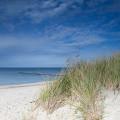 Landschaft auf der Ostsee-Halbinsel Fischland Darß-Zingst